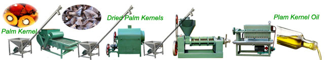 small scale palm kernel oil pressing line