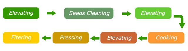 main process of the rapeseed oil processing