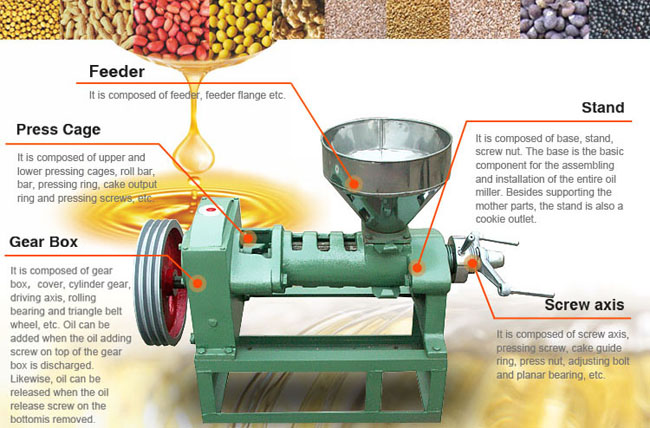 Small Seed Oil Press